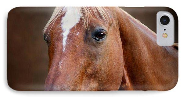 Fox - Quarter Horse Phone Case by Sandy Keeton