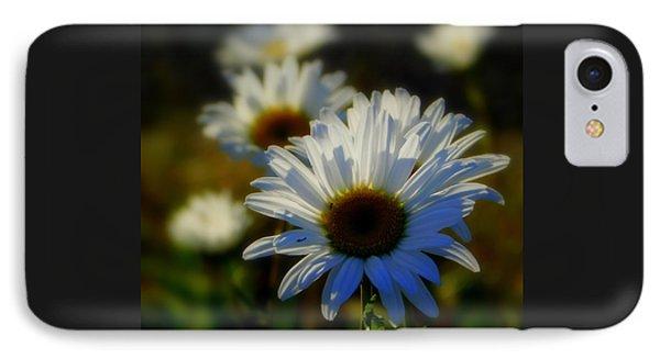 Fresh As A Daisy IPhone Case by Karen Cook