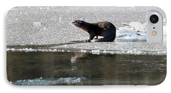 Frosty River Otter  IPhone Case by Mike Dawson