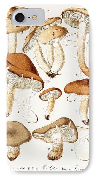 Fungi IPhone 7 Case by Jean-Baptiste Barla