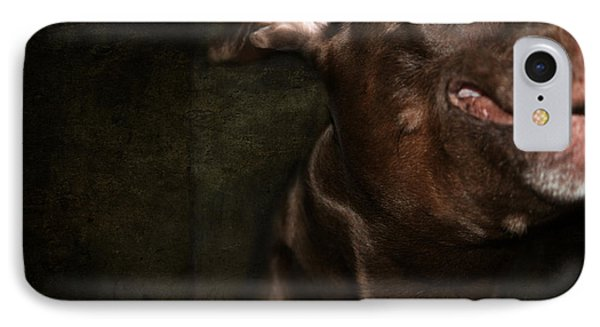Funny Dog 3 IPhone Case by Heike Hultsch