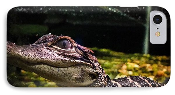 Gator Tank IPhone Case by Kendall Tabor