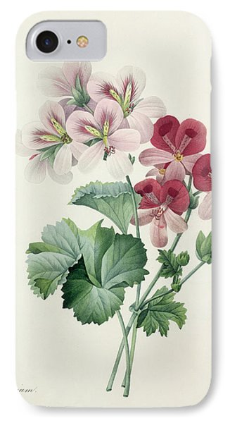 Geranium Variety IPhone Case by Pierre Joseph Redoute