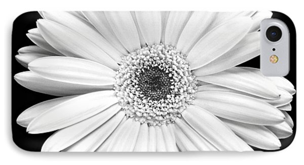 Gerbera Daisy IPhone Case by Marilyn Hunt