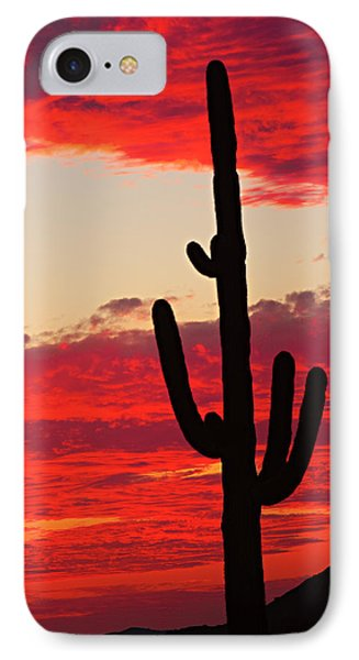 Giant Saguaro  Southwest Desert Sunset Phone Case by James BO  Insogna
