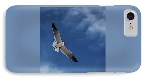 Glider IPhone Case by Don Spenner