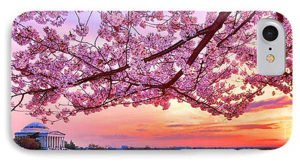 Glorious Sunset Over Cherry Tree At The Jefferson Memorial  IPhone Case by Olivier Le Queinec