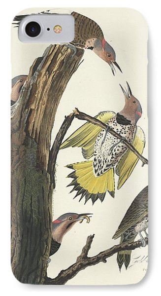 Gold-winged Woodpecker IPhone 7 Case by John James Audubon
