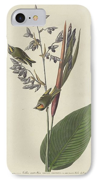 Golden-crested Wren IPhone 7 Case by John James Audubon