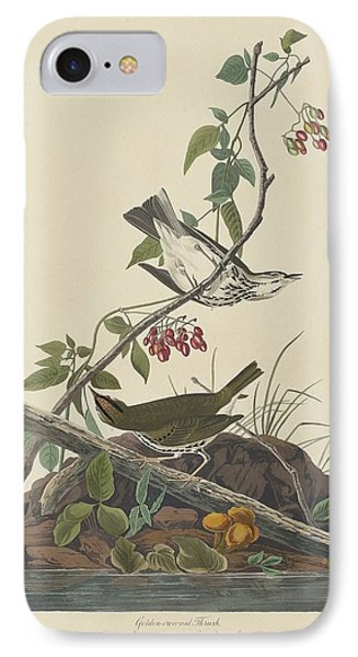 Golden-crowned Thrush IPhone 7 Case by John James Audubon