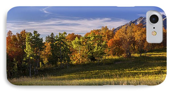 Golden Meadow IPhone Case by Chad Dutson
