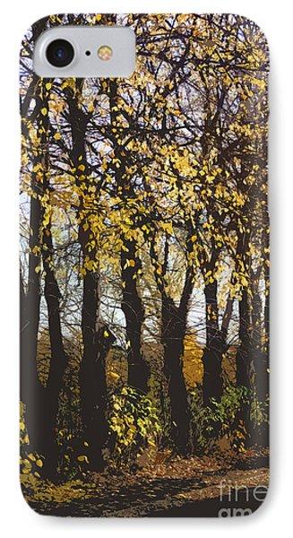 Golden Trees 1 Phone Case by Carol Lynch