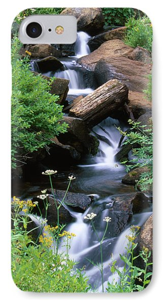 Golden Trout Wilderness IPhone Case by Soli Deo Gloria Wilderness And Wildlife Photography