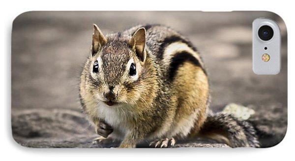 Got Nuts Phone Case by Evelina Kremsdorf