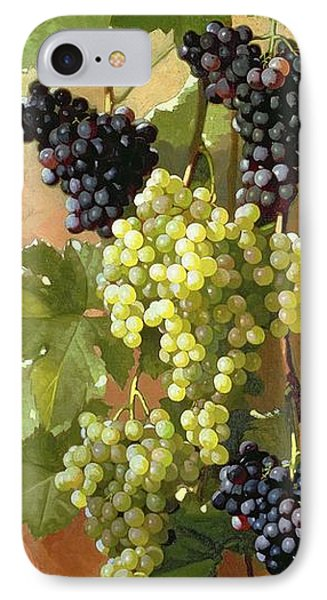 Grapes IPhone Case by Edward Chalmers Leavitt