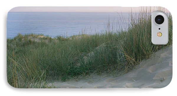 Grass On A Sand Dune, Indiana Dunes IPhone Case by Panoramic Images