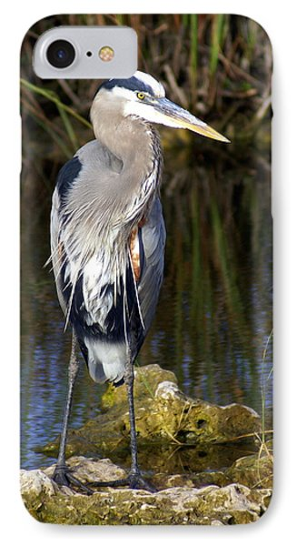 Great Blue Phone Case by Marty Koch