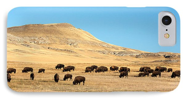 Great Plains Buffalo IPhone Case by Todd Klassy