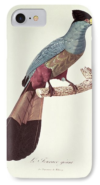 Great Touraco Phone Case by Jacques Barraband
