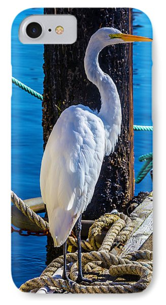 Great White Heron IPhone 7 Case by Garry Gay