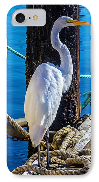 Great White Heron IPhone Case by Garry Gay