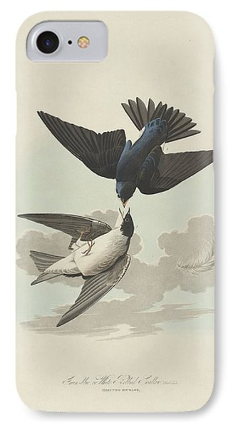Green-blue Or White-bellied Swallow IPhone Case by John James Audubon