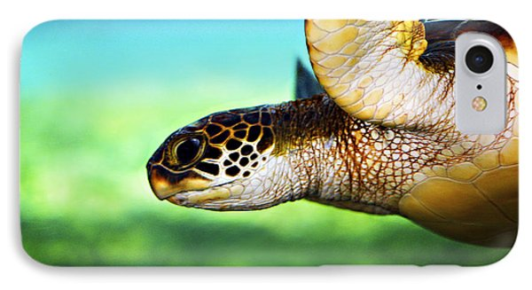 Green Sea Turtle IPhone 7 Case by Marilyn Hunt
