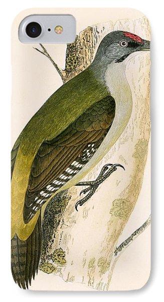 Grey Woodpecker IPhone Case by English School