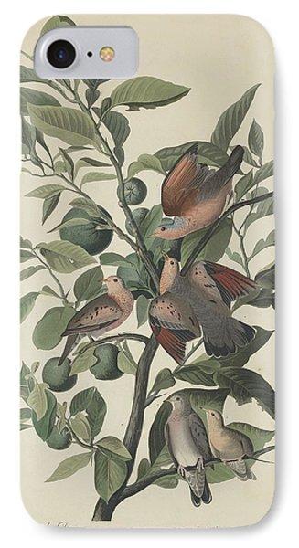 Ground Dove IPhone Case by John James Audubon