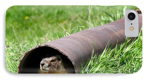 Groundhog In A Pipe IPhone Case by Will Borden