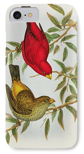 Haematospiza Sipahi IPhone 7 Case by John Gould