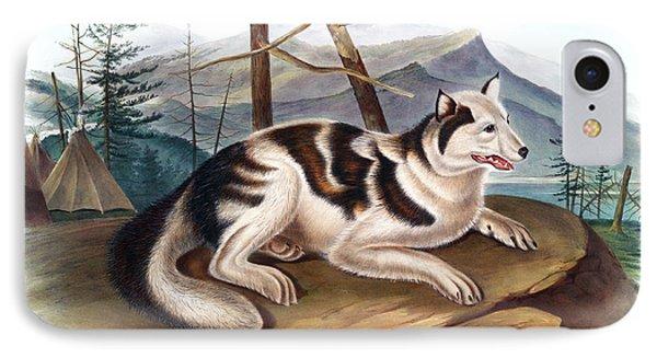 Hare Indian Dog Antique Print Audubon Quadrupeds Of North America Plate 132 IPhone Case by John Audubon