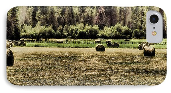 Hay Harvest Phone Case by David Patterson