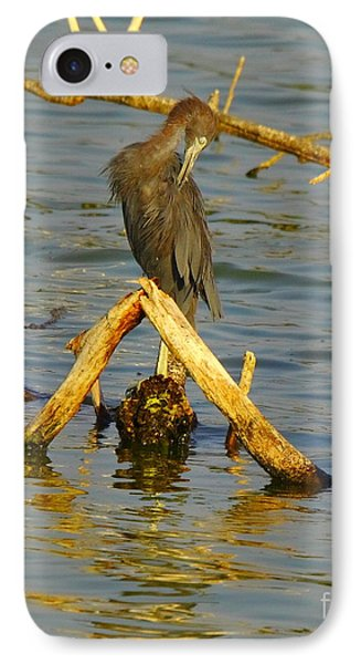 Heron And Turtle IPhone Case by Robert Frederick