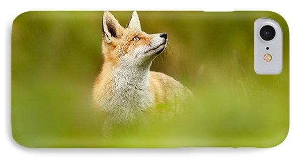High Hopes - Red Fox Looking Up IPhone Case by Roeselien Raimond