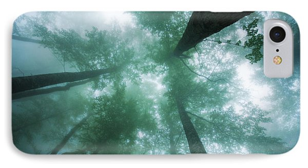 High In The Mist IPhone Case by Evgeni Dinev