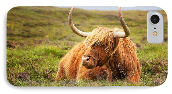 Highland Cow IPhone Case by Jane Rix