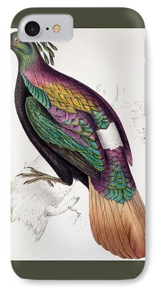 Himalayan Monal Pheasant IPhone 7 Case by John Gould