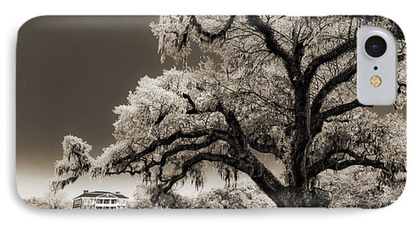 Historic Drayton Hall In Charleston South Carolina Live Oak Tree IPhone Case by Dustin K Ryan