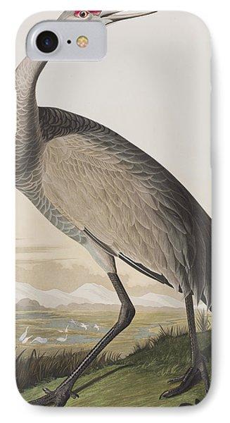 Hooping Crane IPhone Case by John James Audubon
