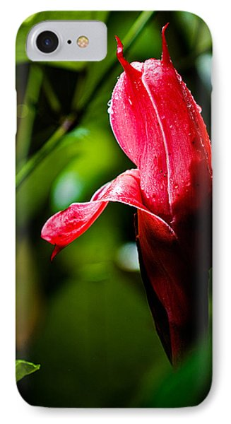 Horned Blossom Phone Case by Christopher Holmes