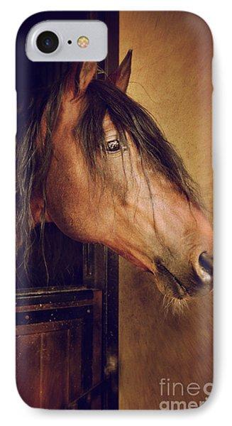 Horse Portrait IPhone Case by Carlos Caetano