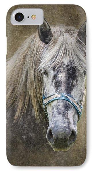 Horse Portrait I IPhone Case by Tom Mc Nemar