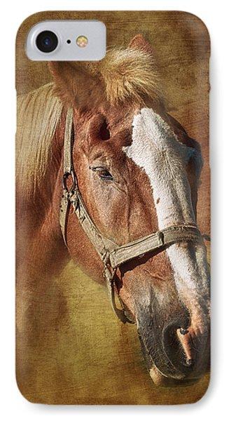 Horse Portrait II IPhone Case by Tom Mc Nemar