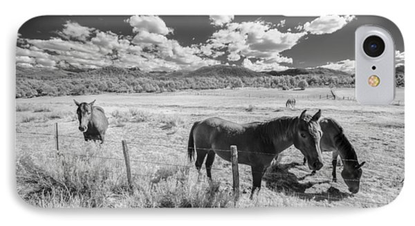 Horses Of San Juan IPhone Case by Jon Glaser