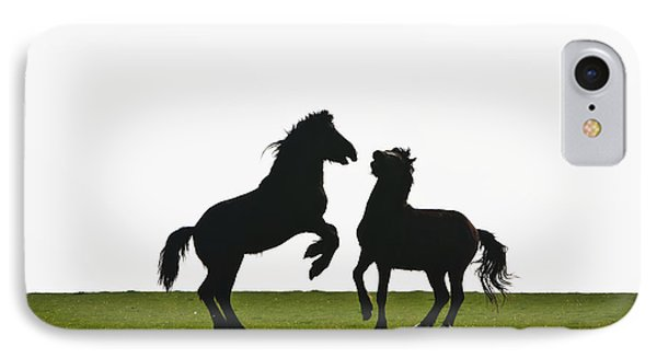 Horses Playing In A Field Near Abermawr IPhone Case by Paul Quayle