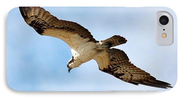 Hunter Osprey IPhone 7 Case by Carol Groenen