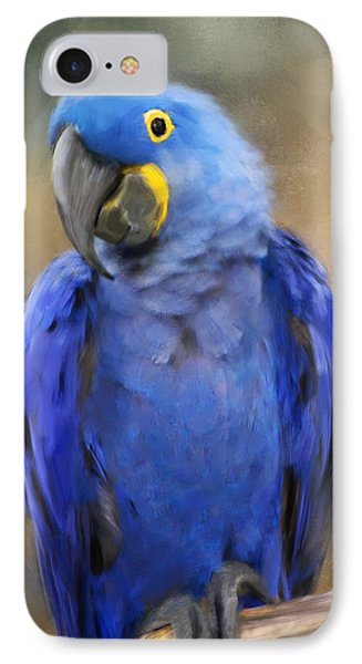 Hyacinth Macaw  IPhone 7 Case by Jai Johnson