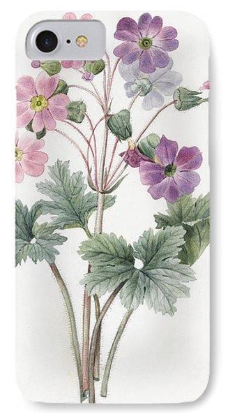Hybrid Auricula IPhone Case by Louise D'Orleans