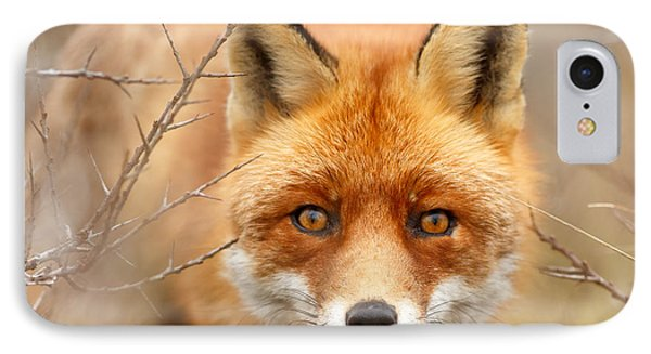 I See You - Red Fox Spotting Me IPhone Case by Roeselien Raimond